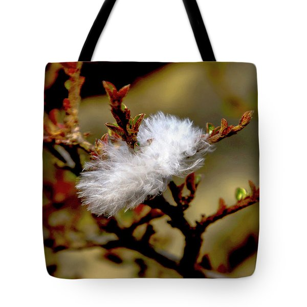 Fallen Feather Tote Bag