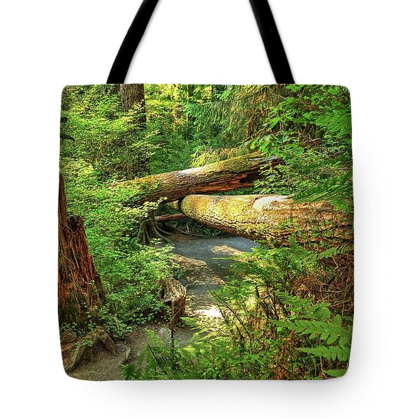 Fallen Trees In The Hoh Rain Forest Tote Bag