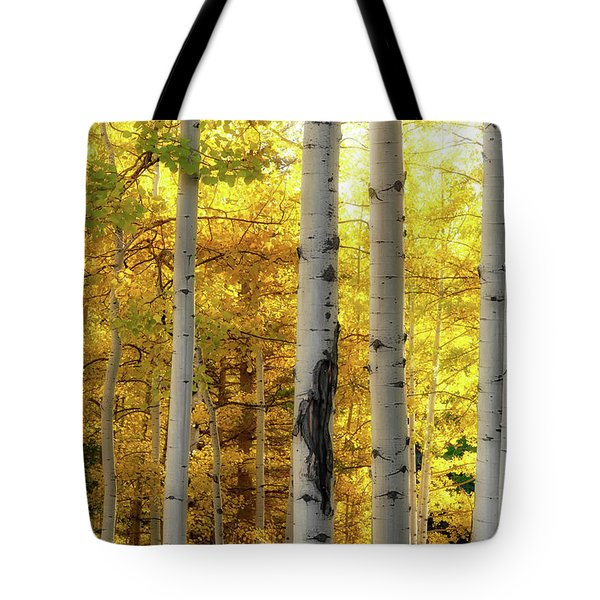 Tote Bag featuring the photograph Fall's Visitation by Rick Furmanek