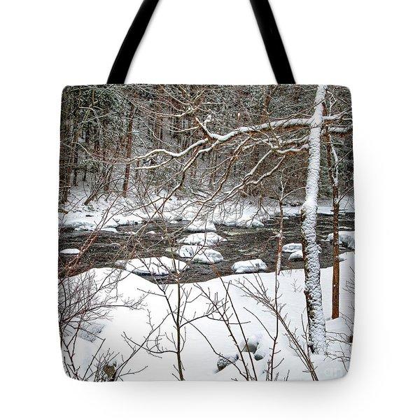 Farmington River - Northern Section Tote Bag