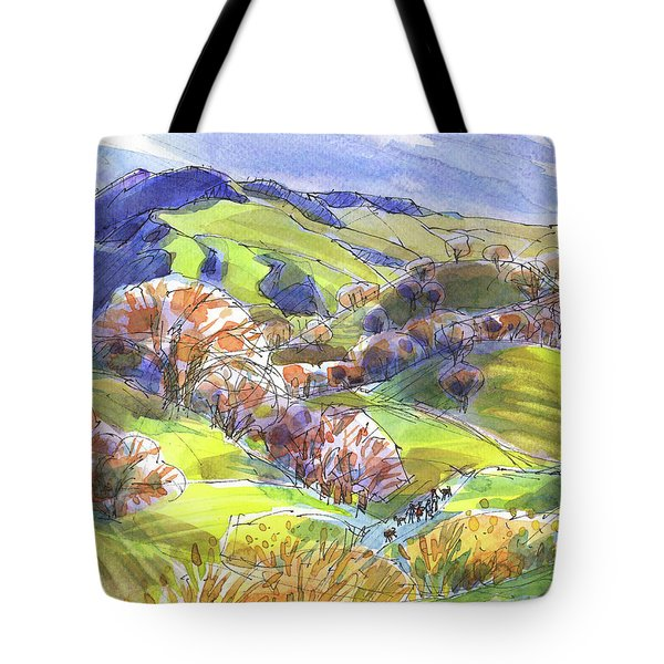 February Landscape With Mount Diablo Tote Bag
