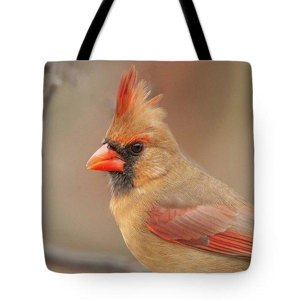Female Cardinal Portrait Tote Bag