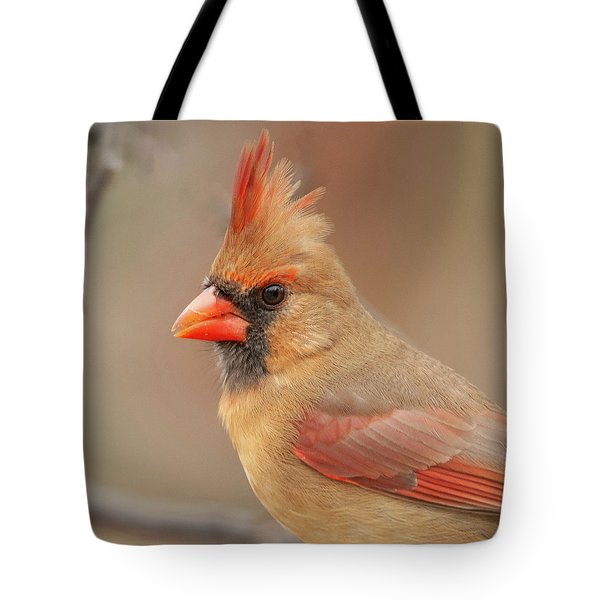 Female Cardinal Portrait Tote Bag