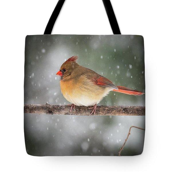 Female Red Cardinal Snowstorm Tote Bag