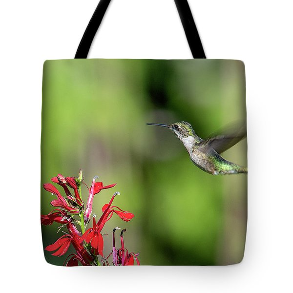 Female Ruby-throated Hummingbird Dsb0320 Tote Bag