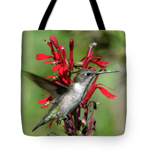 Female Ruby-throated Hummingbird Dsb0325 Tote Bag