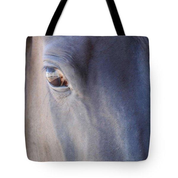 Fenced Foal Tote Bag