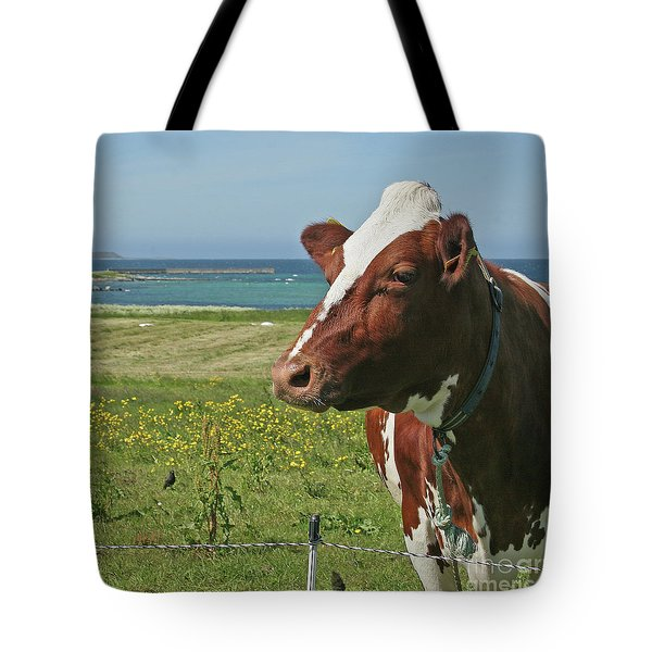Tote Bag featuring the photograph Fenced In by PJ Boylan