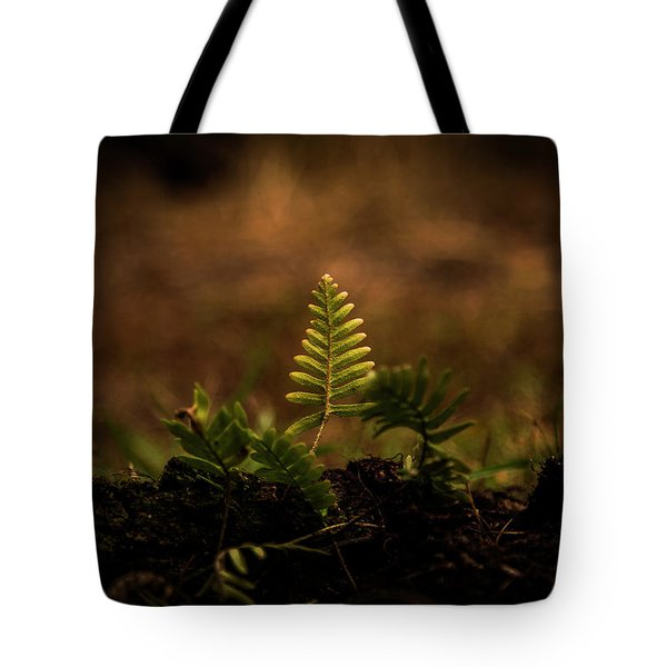 Fern Of Life Tote Bag