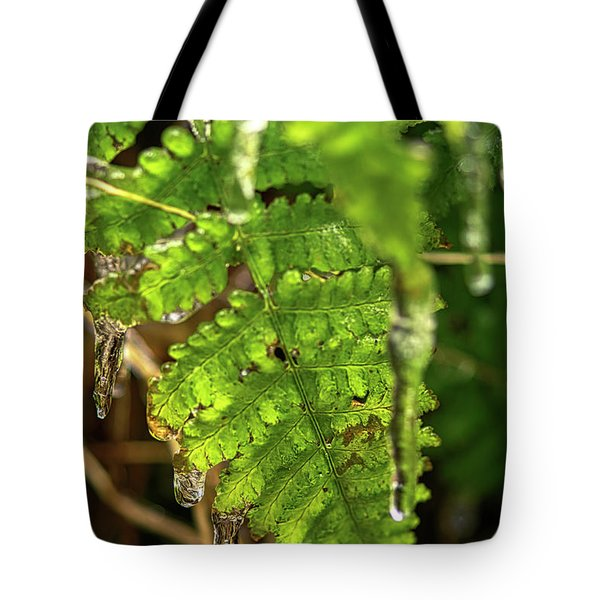 Tote Bag featuring the photograph Fernsickle by Meta Gatschenberger