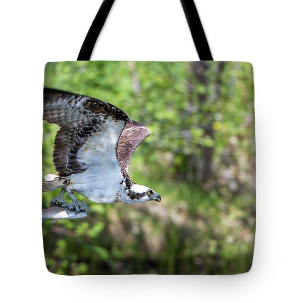 Fetcher Catch  Tote Bag