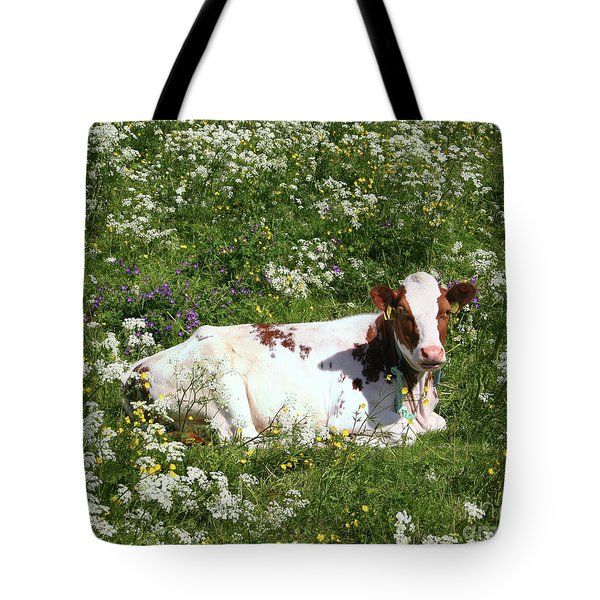 Tote Bag featuring the photograph Field Day by PJ Boylan