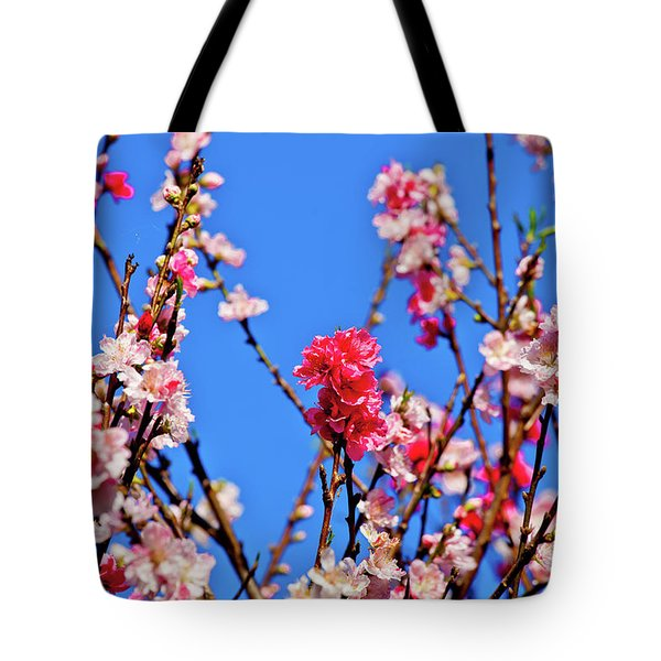 Pinks And Blues Tote Bag