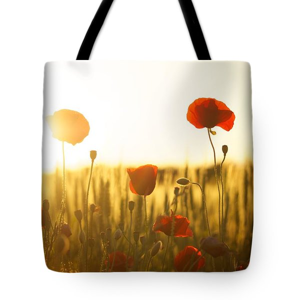 Field Of Poppies At Dawn Tote Bag