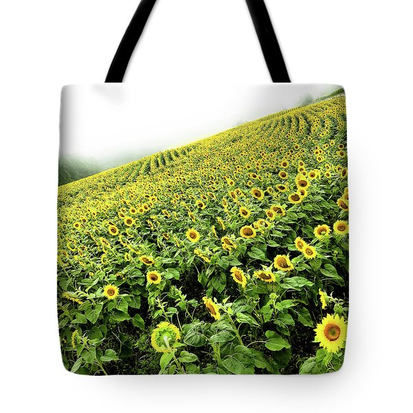 Tote Bag featuring the photograph Fields Of Yellow by Shane Kelly