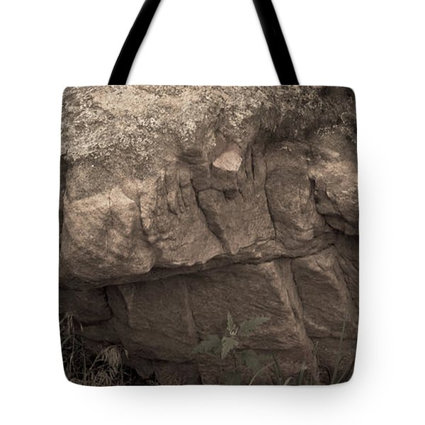Tote Bag featuring the photograph Figurative V by Catherine Sobredo