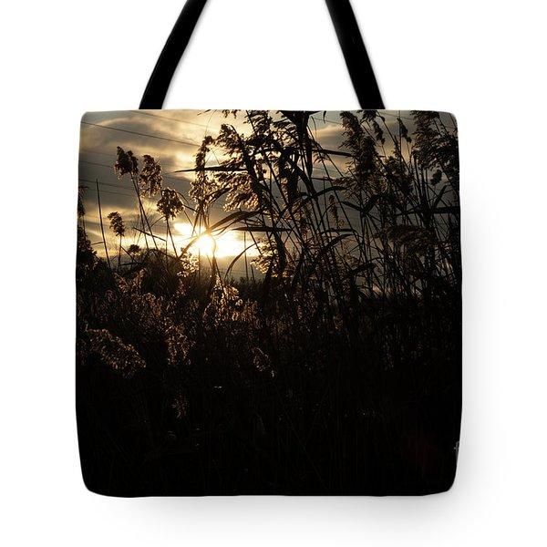 Fine Art - Dusk Tote Bag