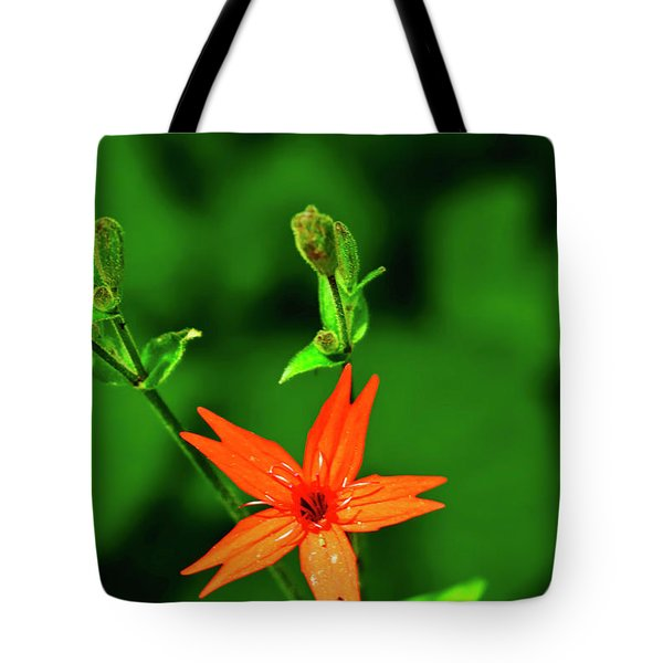 Tote Bag featuring the photograph Fire Pink by Meta Gatschenberger