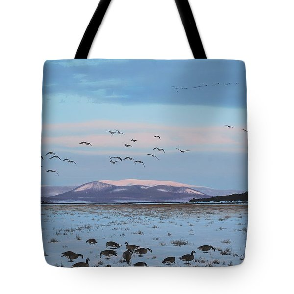 First Arrivals Tote Bag