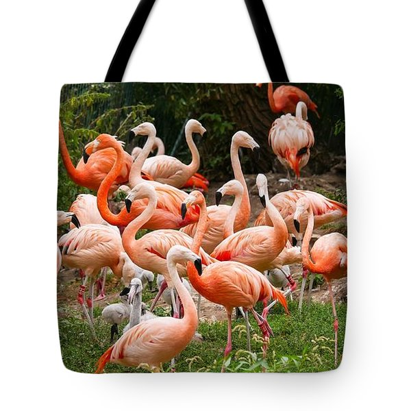 Tote Bag featuring the photograph Flamingos Outdoors by Top Wallpapers