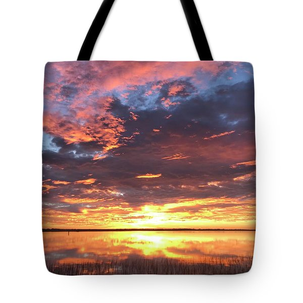 Tote Bag featuring the photograph Flash by LeeAnn Kendall
