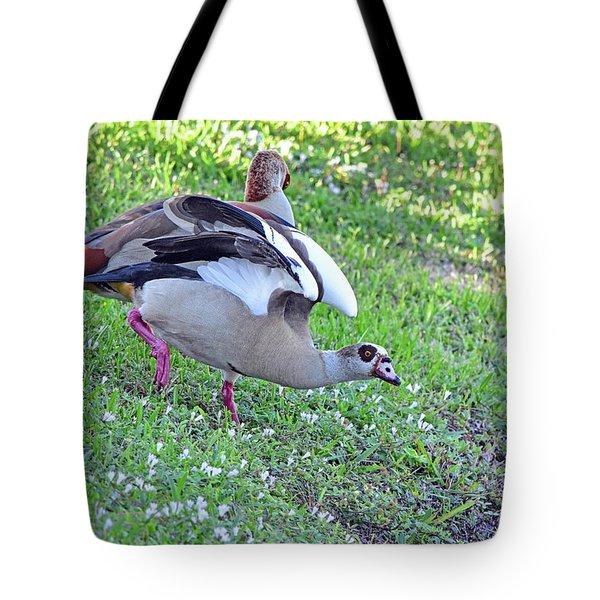 Flirty Egyptian Gal Tote Bag