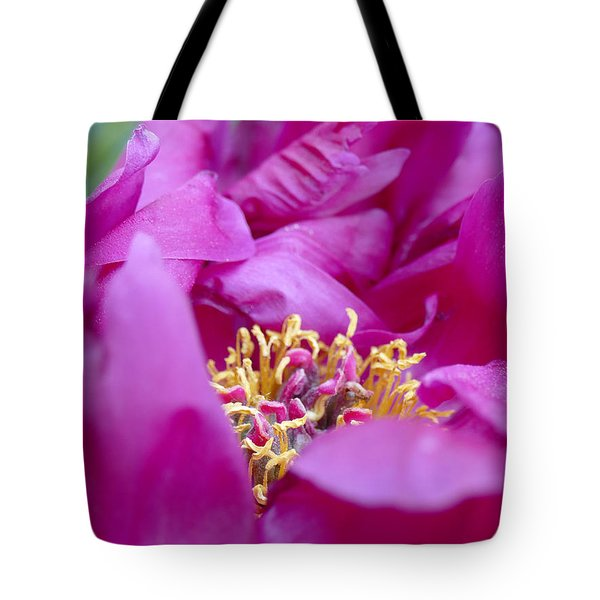 Tote Bag featuring the photograph Floral Melody #1 by Ahma's Garden