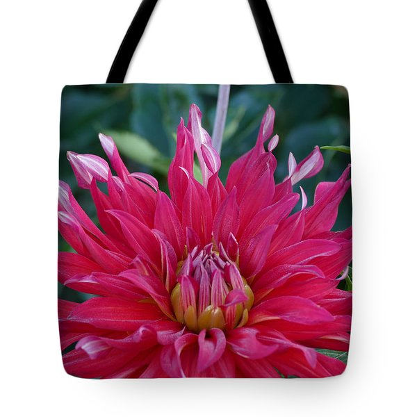 Tote Bag featuring the photograph Floral Melody #4 by Ahma's Garden
