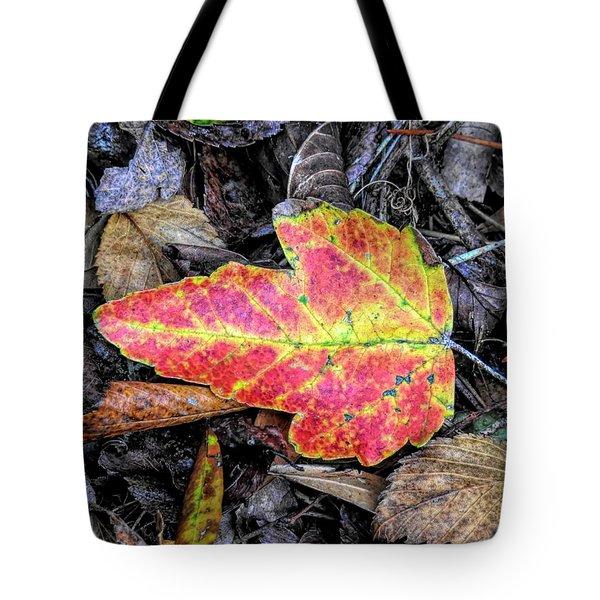 Florida Foliage Tote Bag