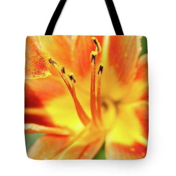 Flower Pollen Tote Bag