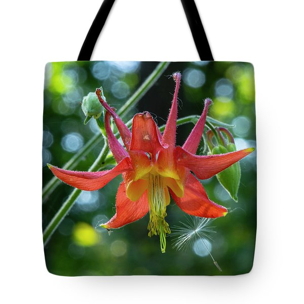 Tote Bag featuring the photograph Flowerworks - Columbine With An Asterisk  by Matthew Irvin
