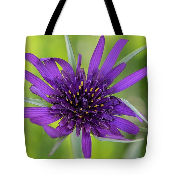 Tote Bag featuring the photograph Flowerworks - Purple Flower No 1 by Matthew Irvin