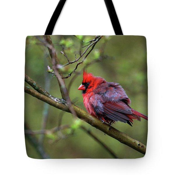 Fluffing Up My Feathers Tote Bag