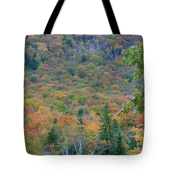 Flume Gorge Wall Of Color Tote Bag