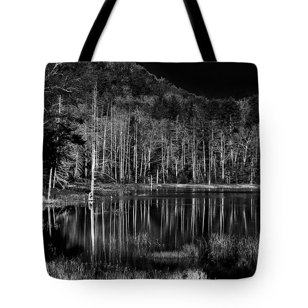 Tote Bag featuring the photograph Fly Pond Reflection by David Patterson