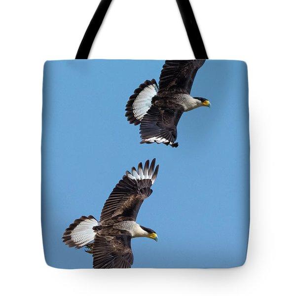 Flying Caracaras Tote Bag