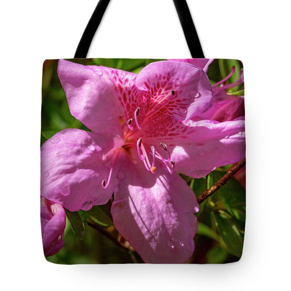 Focus On The Future Tote Bag