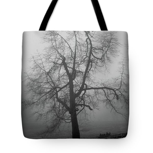 Foggy Tree In Black And White Tote Bag