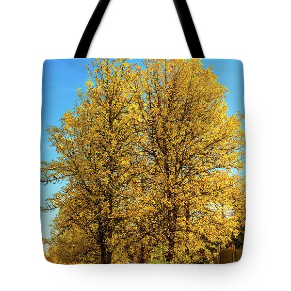 Tote Bag featuring the photograph Foliage by Dheeraj Mutha