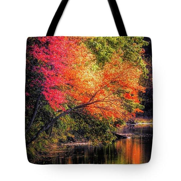 Foliage Over Forge Pond Tote Bag
