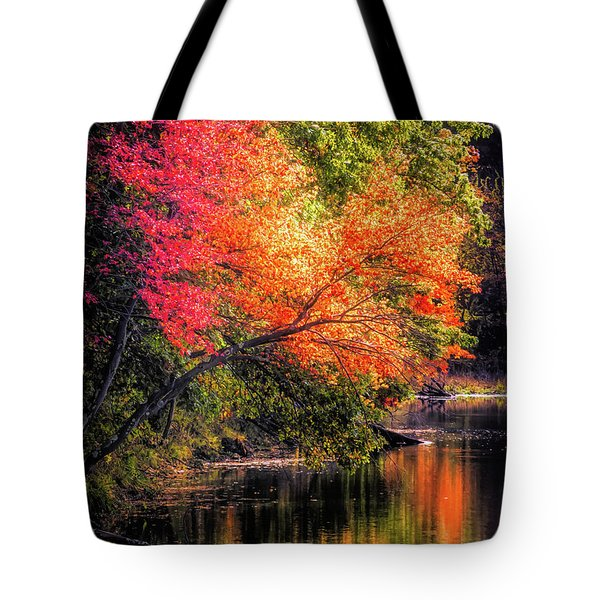 Foliage Over Forge Pond Tote Bag