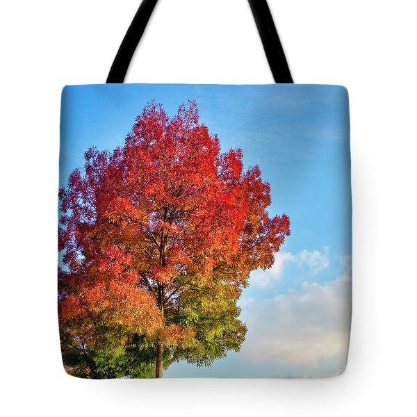 Tote Bag featuring the photograph Foliage In Flanders by Fabrizio Troiani