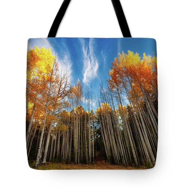Tote Bag featuring the photograph Follow The Yellow Leaf Road by Rick Furmanek