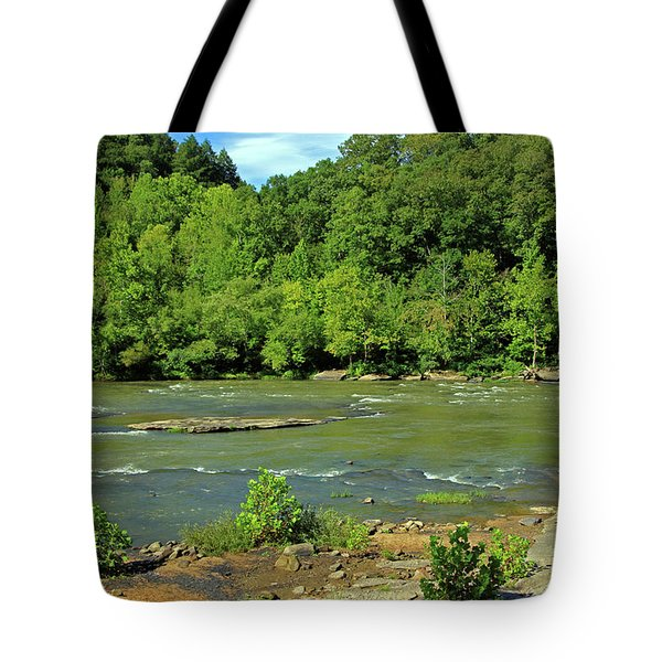 Tote Bag featuring the photograph Forest At Cumberland River by Angela Murdock