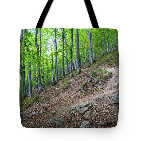 Tote Bag featuring the photograph Forest On Balkan Mountain, Bulgaria by Milan Ljubisavljevic
