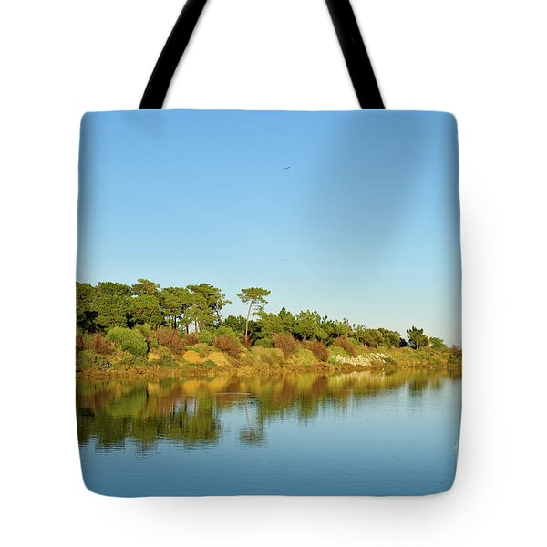 Forests Mirror Tote Bag