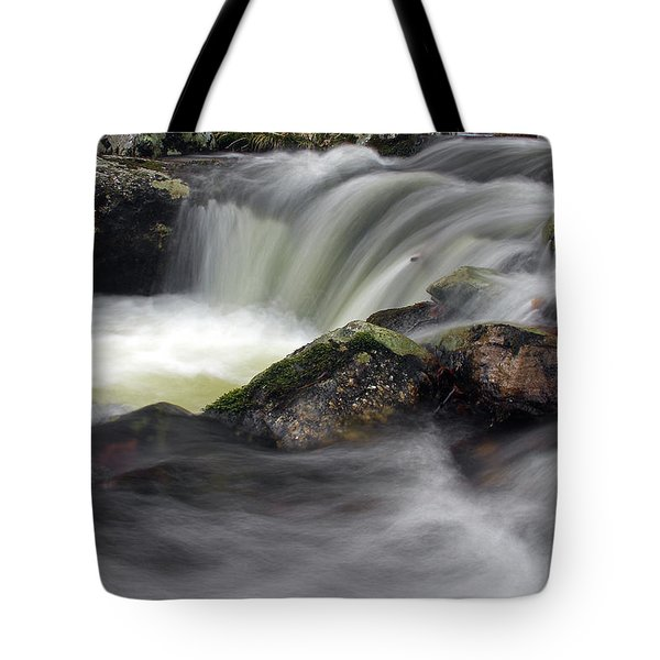 Forked Brook Fall Tote Bag