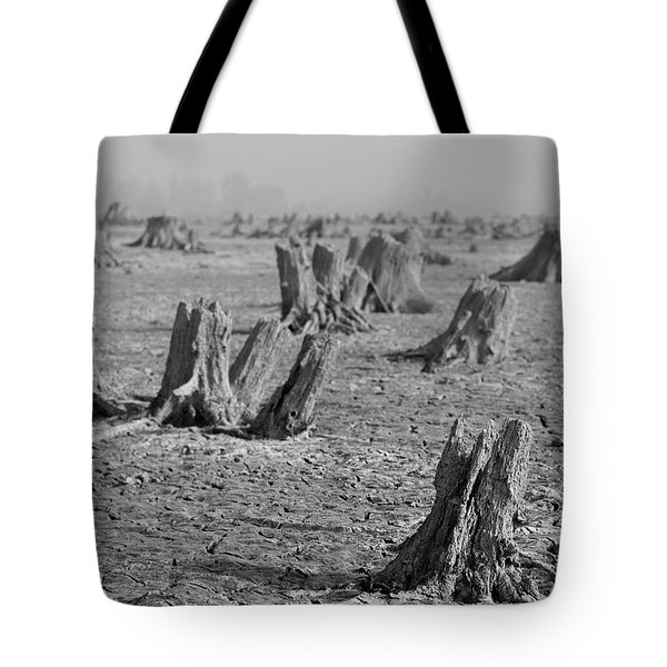 Tote Bag featuring the photograph Forrest by Davor Zerjav