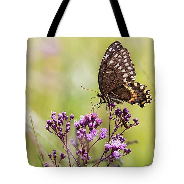 Fragile Wings Tote Bag