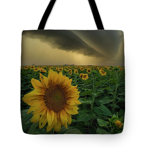 Tote Bag featuring the photograph Frailty  by Aaron J Groen